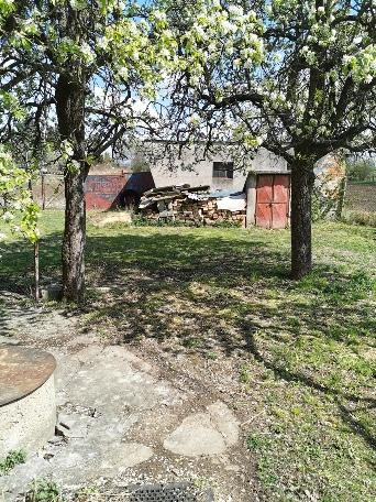 Bátorové Kosihy - dom na veľkom pozemku