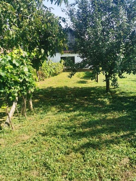 Dulovce - dom na 27 árovom pozemku