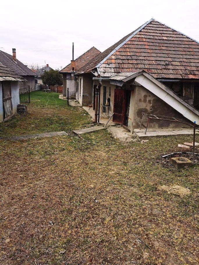 Mužla - dom na 40 árovom pozemku na predaj