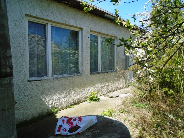 Svodín - dom na predaj