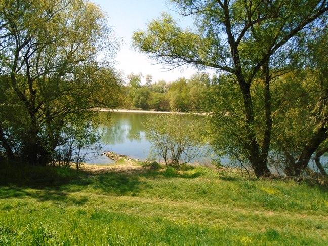 Zemné - RD 100 m od rieky na predaj