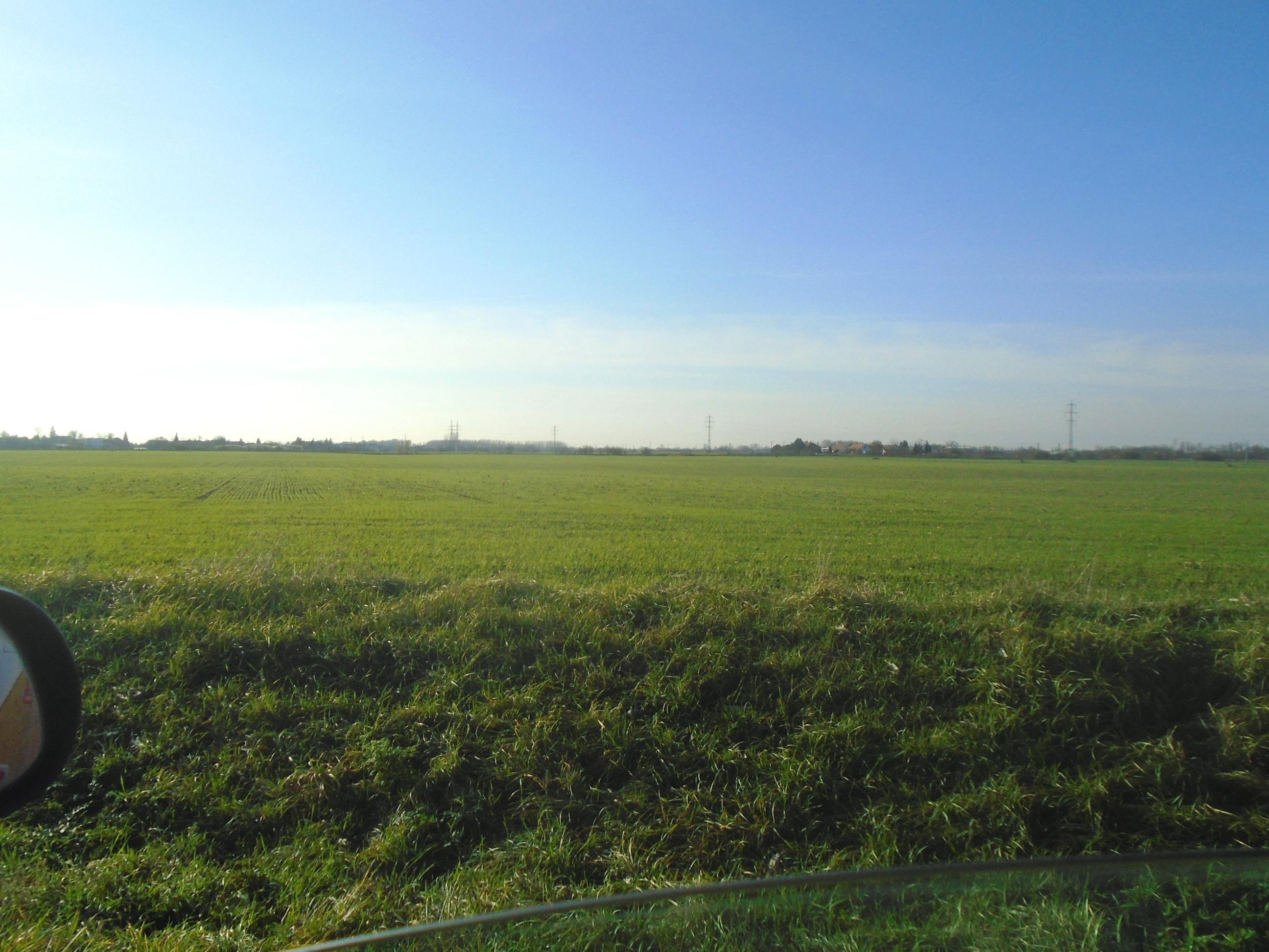 Marcelová - orná pôda na predaj