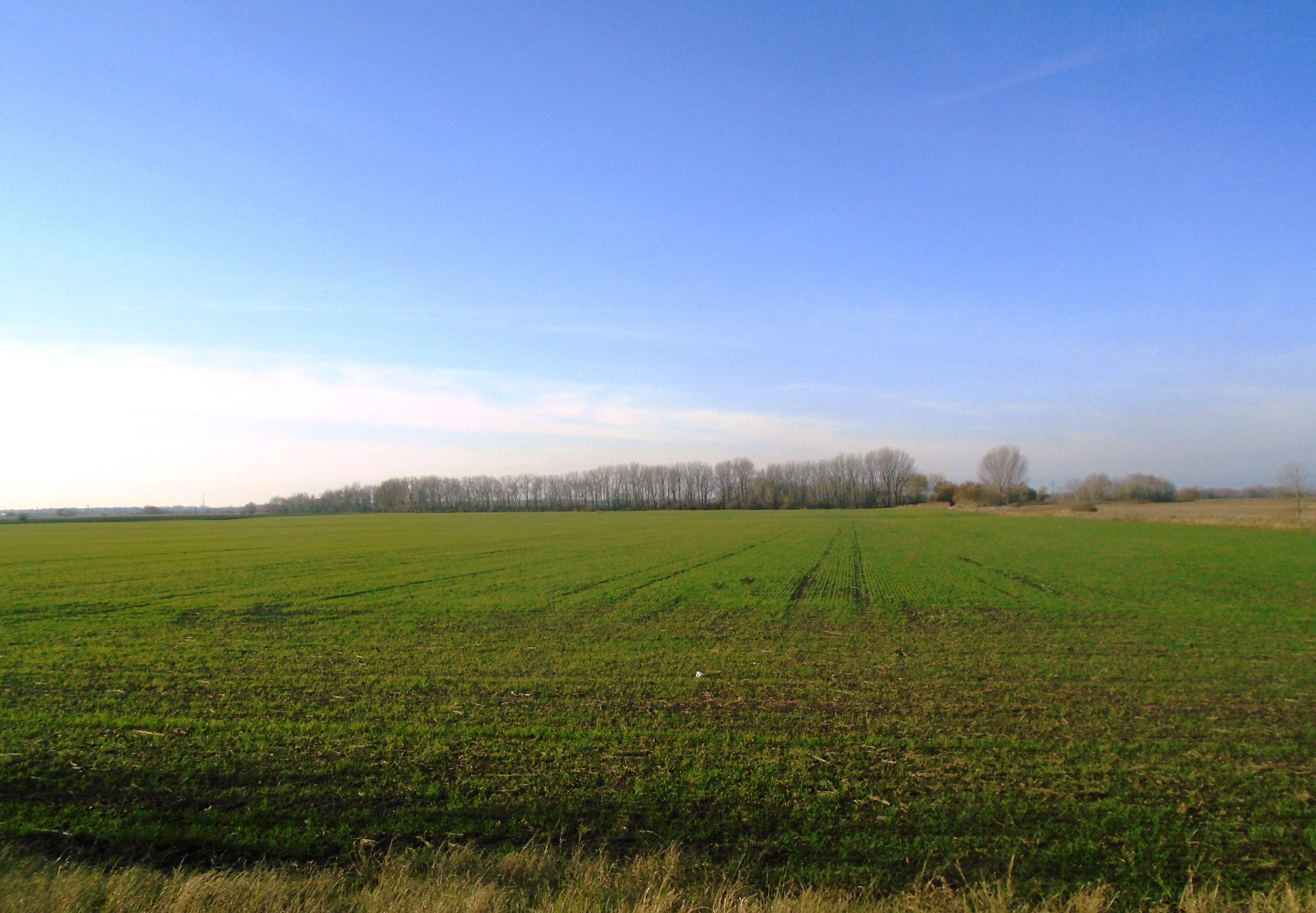 Orné pôdy na predaj na Slovensku
