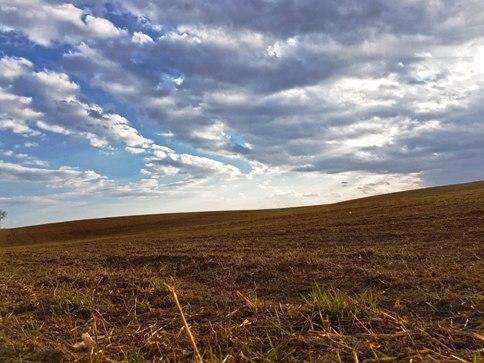 Predaj ornej pôdy  - Spišská Stará Ves