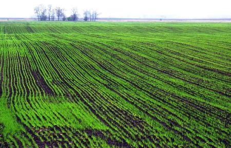 Orná pôda na predaj - okres DS