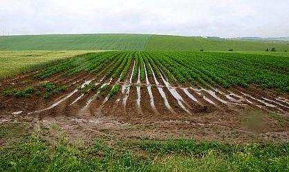 Orná pôda na predaj - okres Dunajská Streda